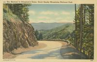 The Skyway to Clingman's Dome, Great Smoky Mountains National Park (215)