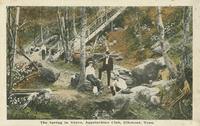 The Spring in Grove, Appalachian Club, Elkmont, Tenn.