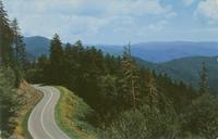 The Clingmans Dome Highway, Along the Crest of the Great Smoky Mountains (GS-28)