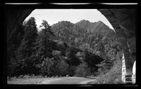 View of The Chimney Tops from the Tunnel on Newfound Gap Road