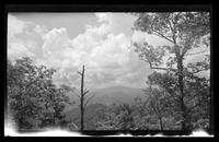 Smoky Mountain Landscapes [Envelope identifies subjects as: Cabin, 1939 April 29-30, LeConte Orchard 1933 Dec. 2-3, 1930] [Prints in Box 33, Folder 39] (2 of 24)