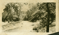 View of a river