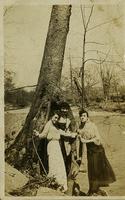Three women beside a tree