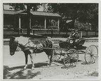 Wallace and Frances Robinson in Buggy