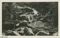 Cascades on way to Guyot Aug 31 - Sept 1-2-1929 (image number 338)