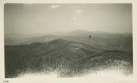 Looking back across State Line toward Clingman Dome from Thunderhead April 11-12-1931 (image number 710)
