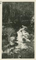 Creek April 11-12-1931 (image number 716)