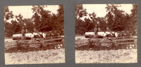 Stereoview of Lumber Wagon