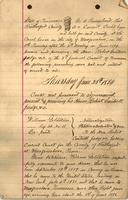 William Goldstein`s Naturalization Papers