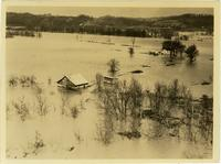 Flooded rural landscape near Ashland City, Tennessee during the flood of 1937