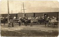 Shipping strawberries in Dayton, Tennessee