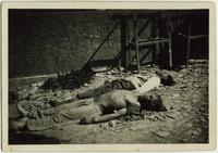 Two dead SS troops at Buchenwald Camp
