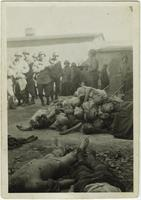 American soldiers view a pile of dead bodies at Buchenwald Concentration Camp