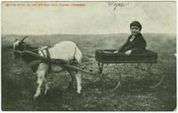 William Wynn, Jr., and His Goat Jack, Pulaski, Tennessee