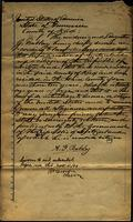 Declaration of Intent and Petition for Citizenship