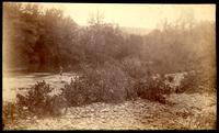 Little River opposite Uncle Sammy Walker's house-Miller's Cove (A.P. Holt wading)