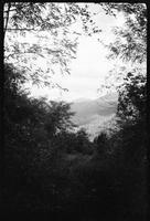 Mt. Chapman