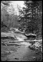 Contains neg. of stream in Greenbrier or Chilhowee. No. 40 is note on print of Haw Knob