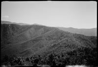 Siler's Bald from tower on Blanket Mtn. (background)