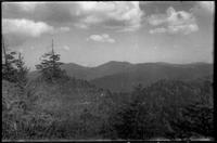 Mt. Chapman in Center - Guyot to the left. [F]rom trail near Laurel Top