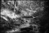 Stream. Porters flats or Chilhowee
