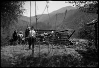 Wrecking old cabin for good timbers to be used in the Hiking Club Cabin (Note young Whaley & his horse on left)