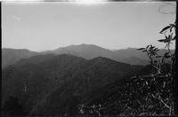 Mt. Leconte from Laurel Top